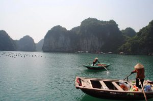 Explore Vietnam with Tampopo